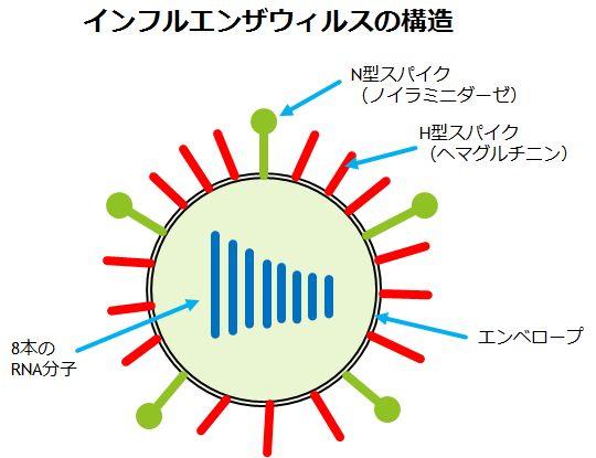 新型インフルエンザ対応ワクチン...