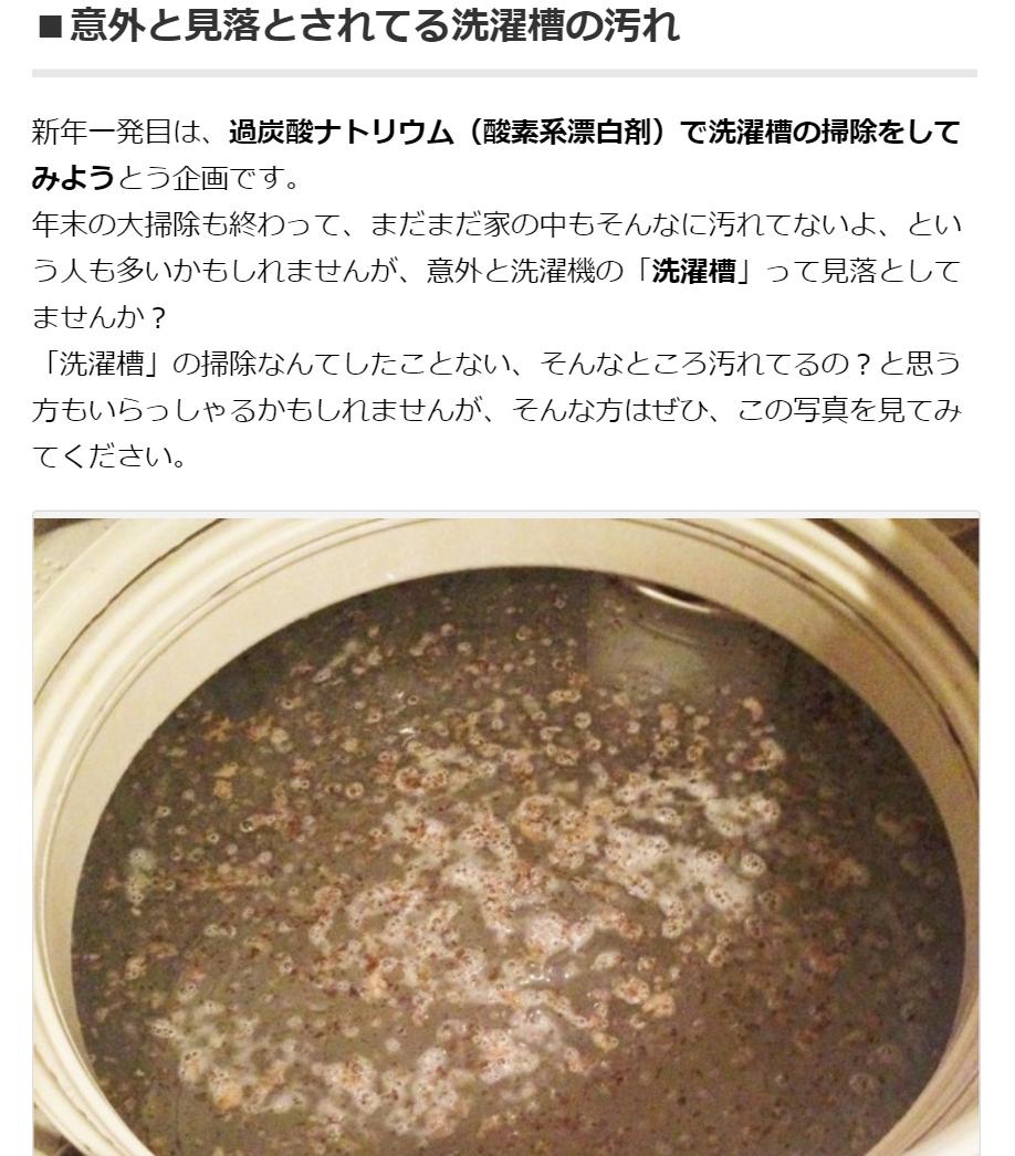 過炭酸ナトリウム(酸素系漂白剤)で洗濯槽を洗浄してみる 木村石鹸 よもやま噺